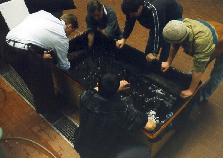 De medewerkers van het RGMZ inspecteren de kisten (1)